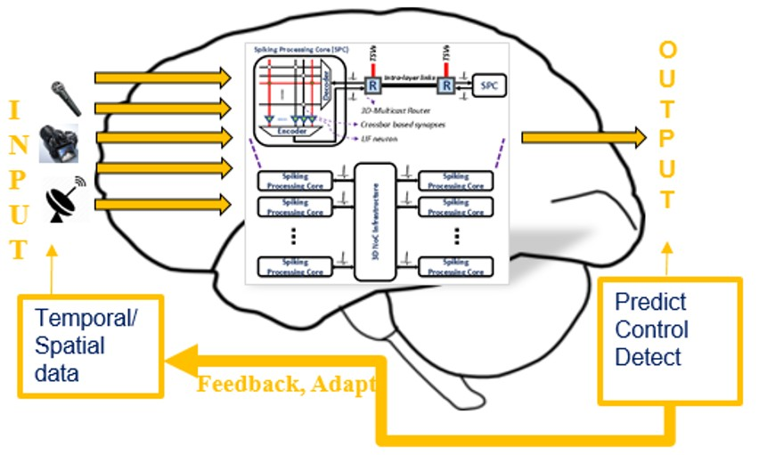 Low-power event-driven adaptive neuromorphic processing system for autonomous cognitive behavior
